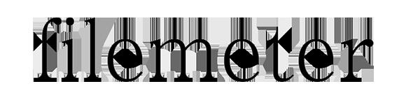 名古屋の整理収納・ファイリングアドバイザー filemeterロゴ
